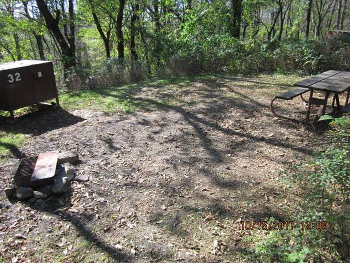 Loft Mountain Campground - Site 32 Picnic table, food storage locker, and fire pit on campsite