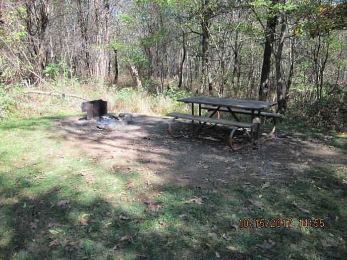 Loft Mountain Campground - Site 43Picnic table and fire pit on campsite