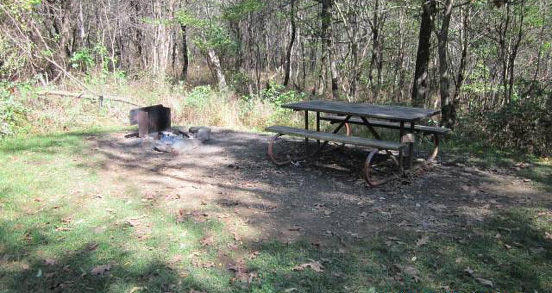 Loft Mountain Campground - Site 43Site 43