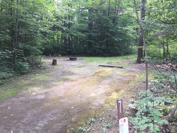 Kiasutha Recreation Area: Campsite 7