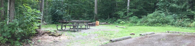 Kiasutha Recreation Area: Campsite 22
