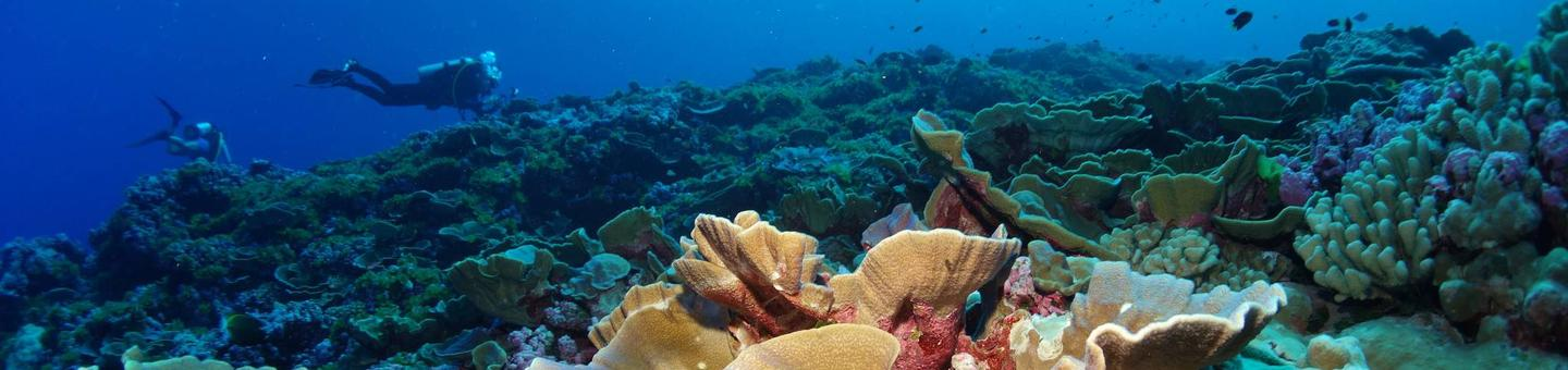 National Marine Sanctuary of American SamoaCoral reef off Swains Island in National Marine Sanctuary of American Samoa