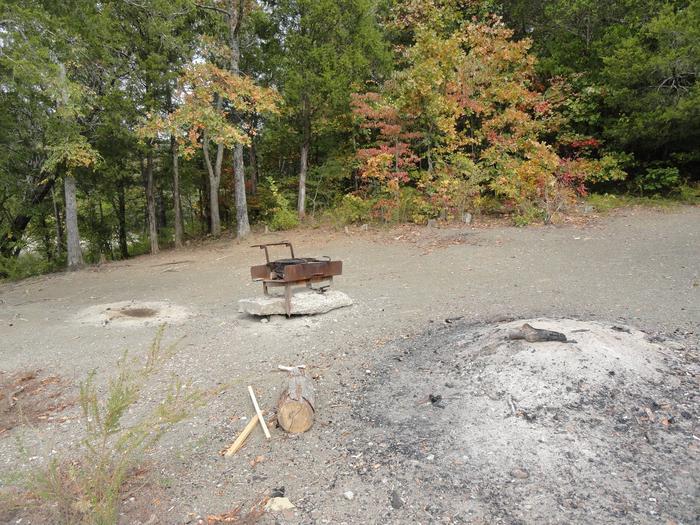 DALE HOLLOW LAKE - PRIMITIVE CAMPING Campsites | Recreation gov