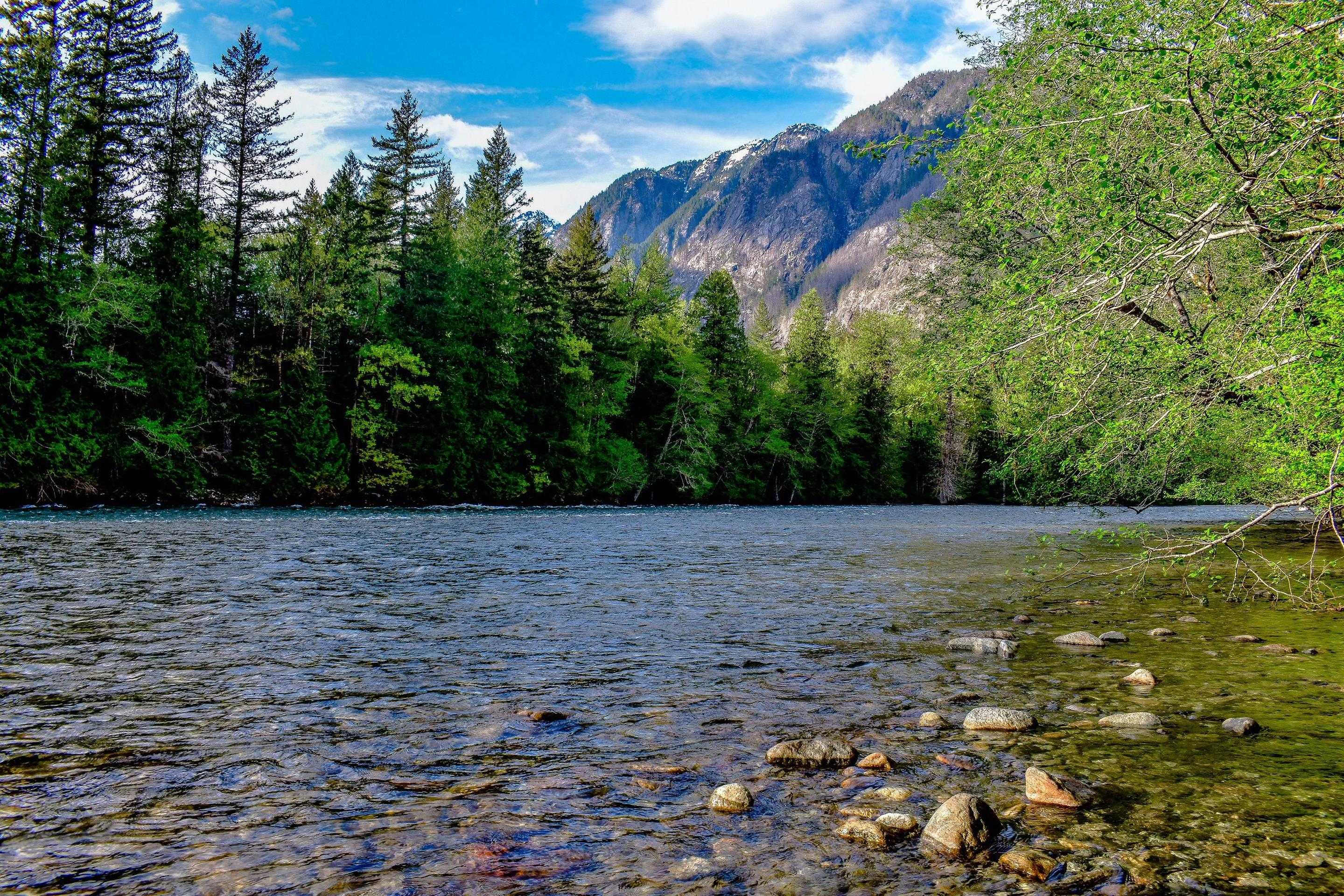 Placid river bordered by lush forests with tall mountains in the distanceSeveral of the trails near the Campground follow the banks of the Skagit River for a distance