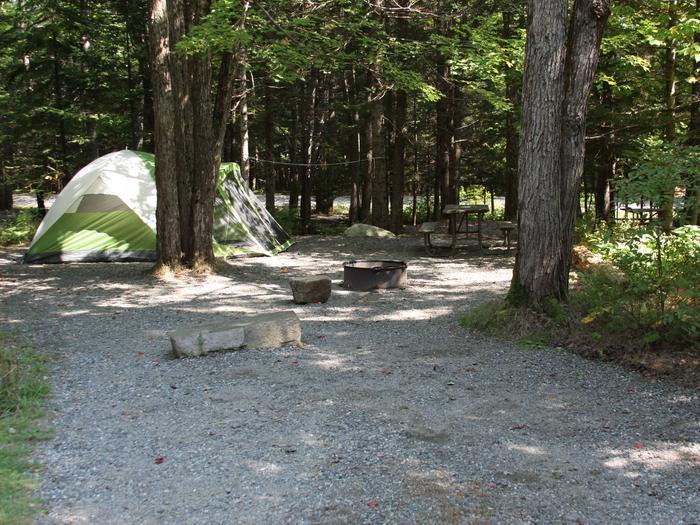 Occupied Site A6Site A6