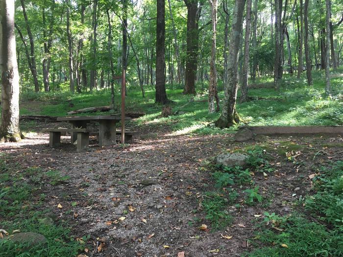 B Loop Site 8 - Tent Nonelectric