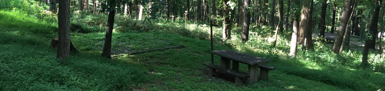 B Loop Site 11 - Tent Nonelectric