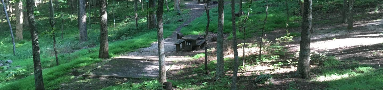 B Loop Site 25 - Tent Nonelectric