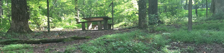 B Loop Site 38 - Tent Nonelectric
