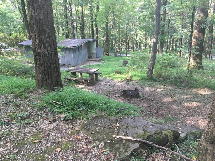 B Loop Site 36 - Tent Nonelectric