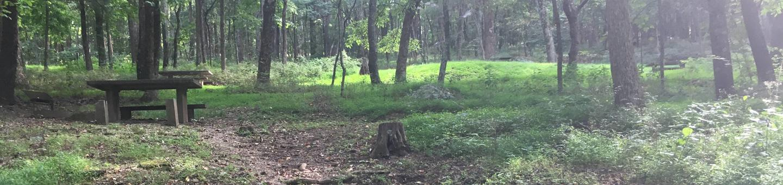 B Loop Site 43 - Tent Nonelectric
