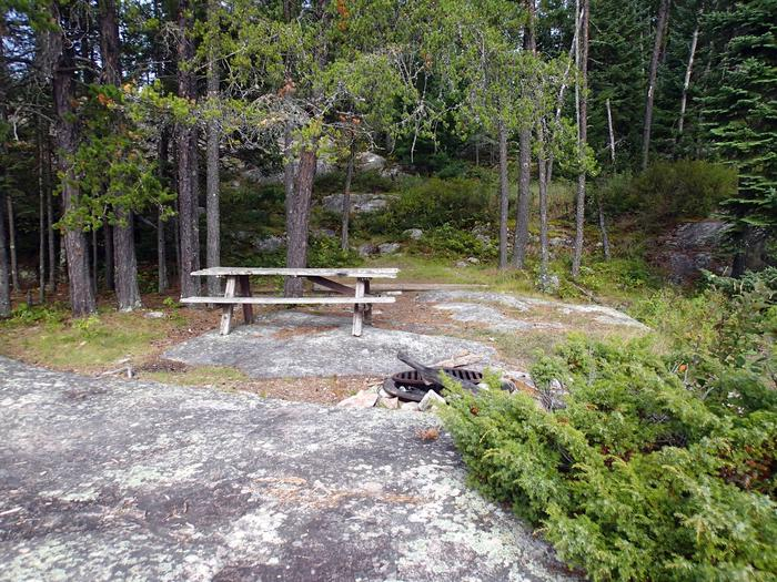 B1 - Agnes Lake backcountry campsiteView of campsite