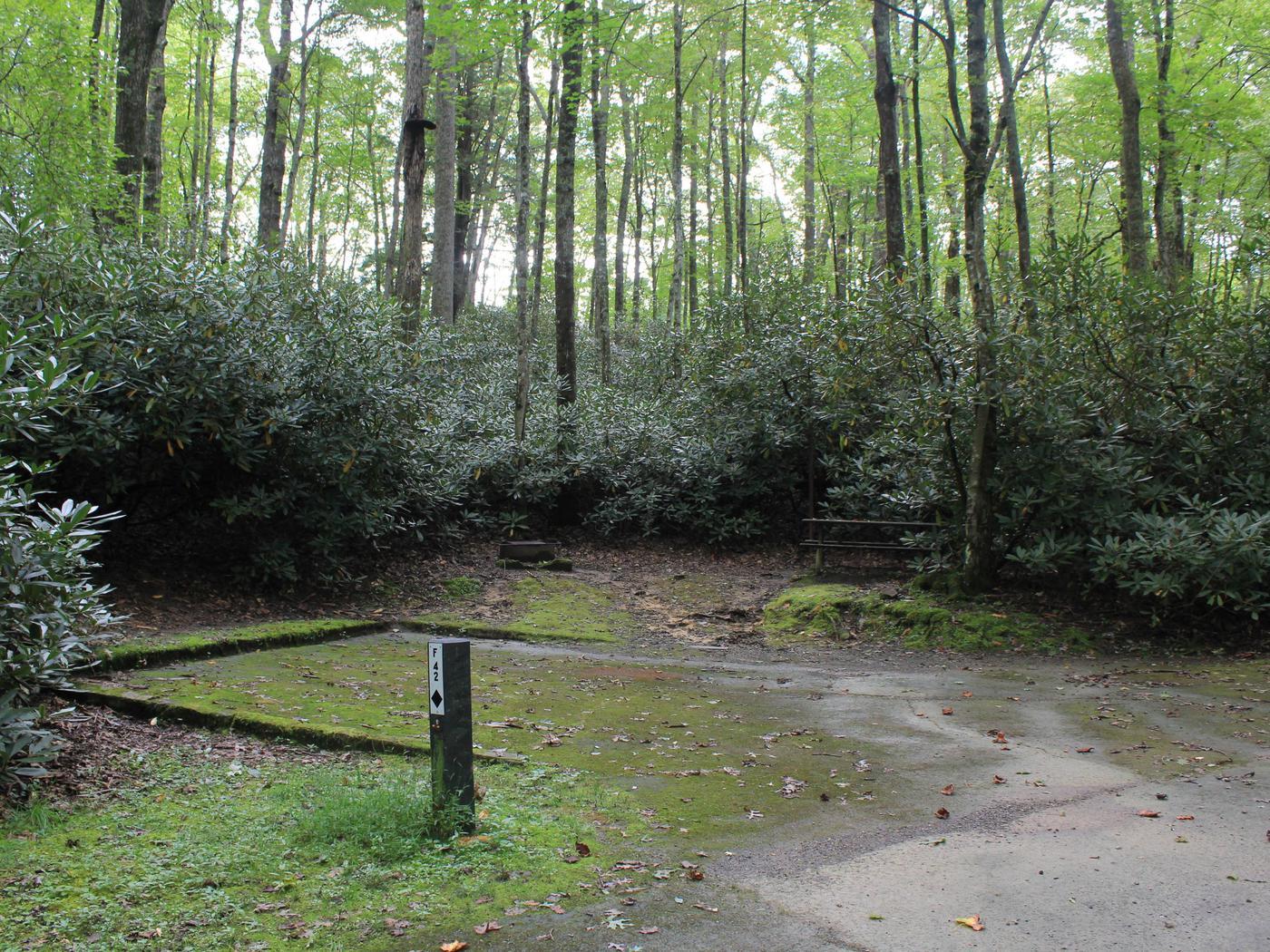 Loop F Site 42 - RV Only