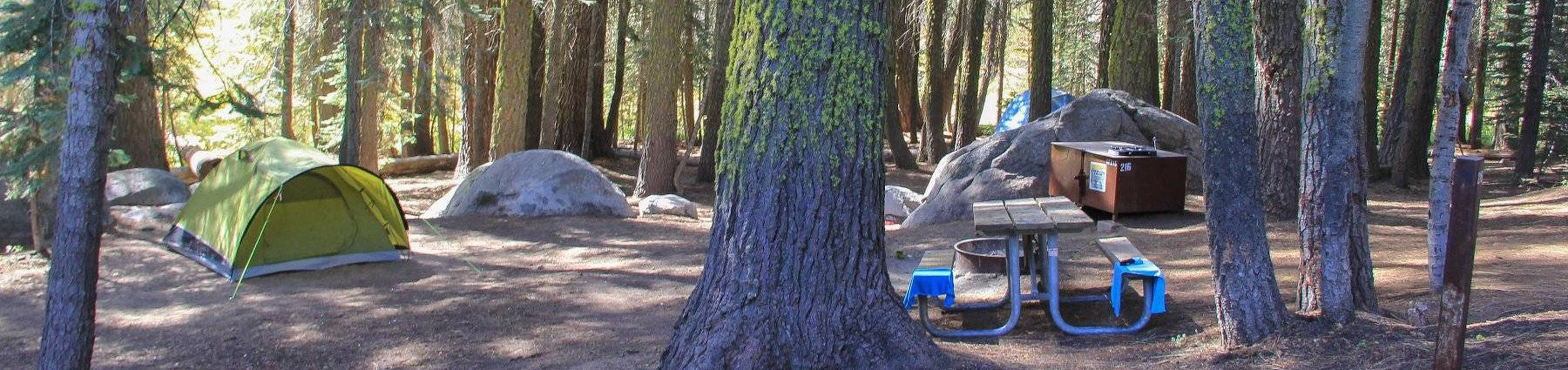 Picture of a site at Crane Flat campground.Tent campsite at Crane Flat campground.
