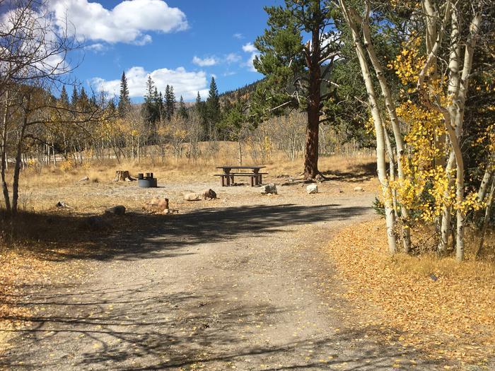 Aspen Site 1