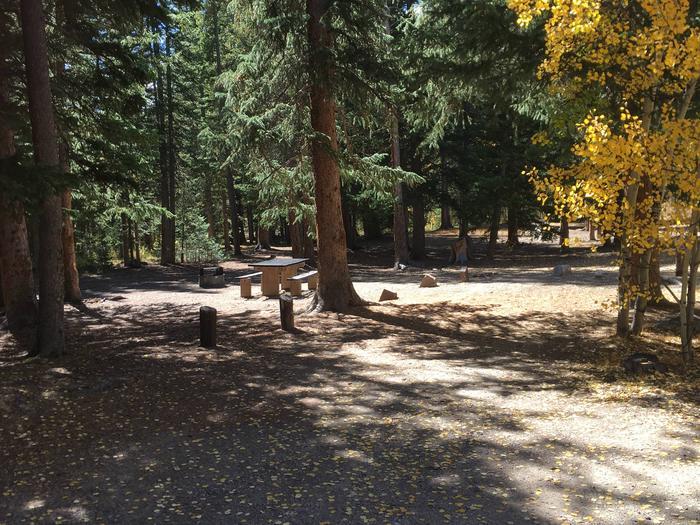 Aspen Site 5