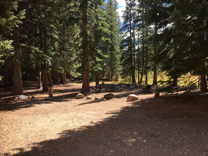 Aspen Site 6