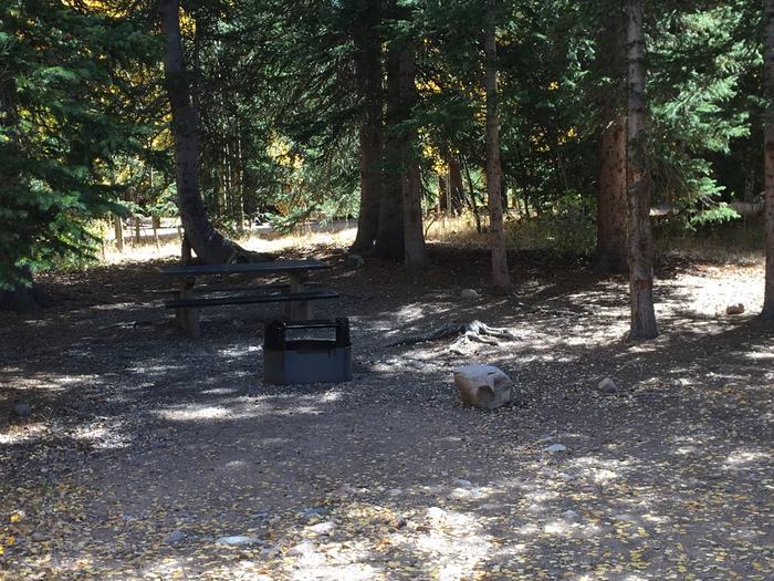 Aspen Site 9