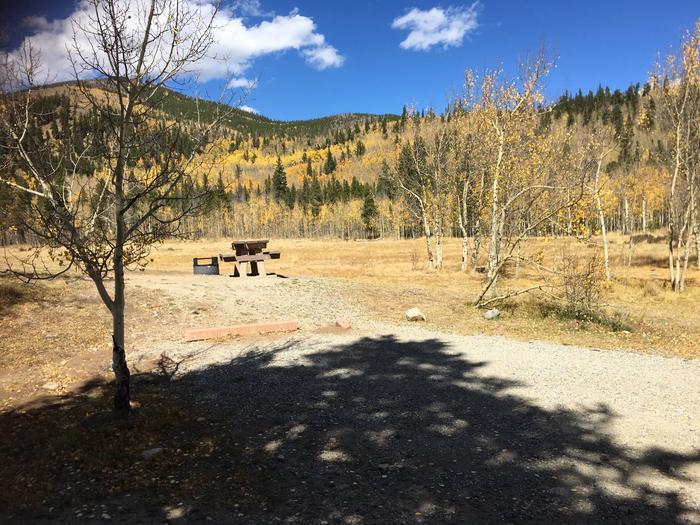 Aspen Site 12