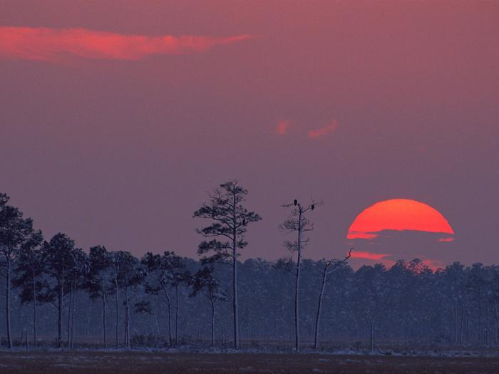 Preview photo of Blackwater National Wildlife Refuge