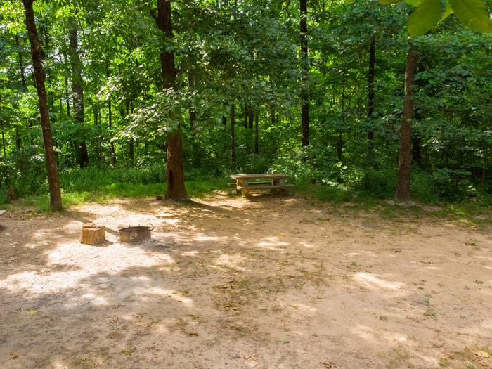 Campsite 9Group Site 9