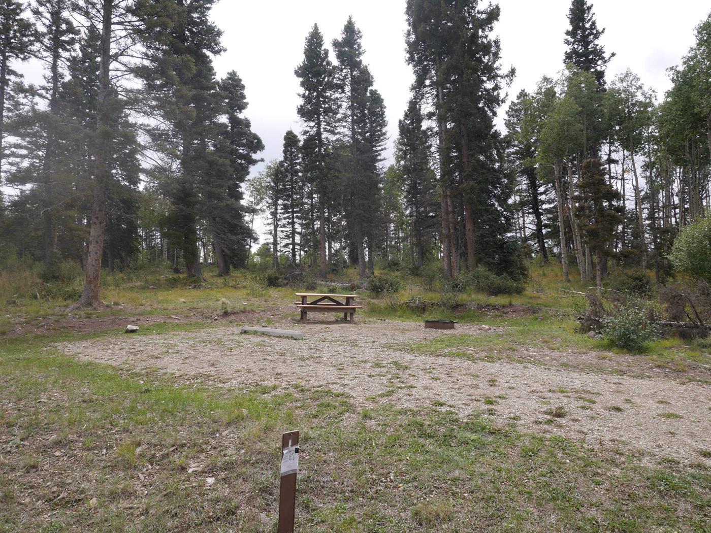 Campsite #14