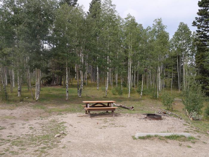 Campsite #16