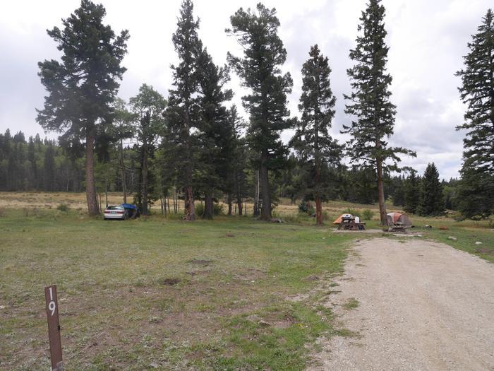Campsite #19