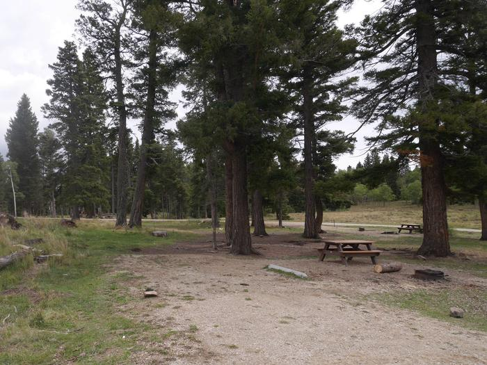 Campsite #23