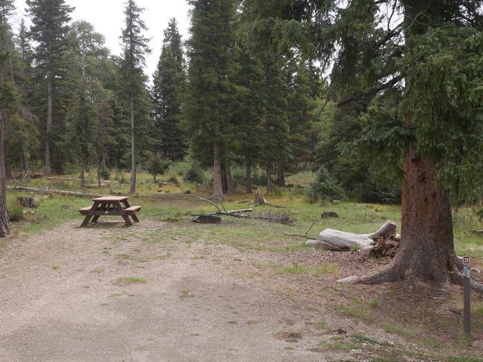Campsite #28