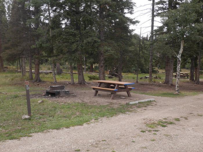 Campsite #31