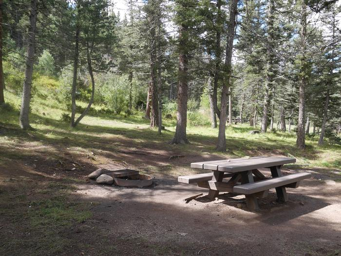 Campsite #12