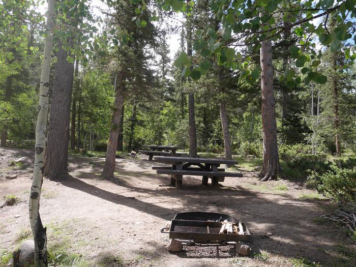 Campsite #17