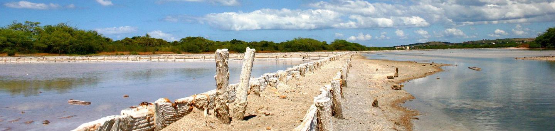 Cabo Rojo National Wildlife RefugeSalt Flats at Cabo Rojo National Wildlife Refuge