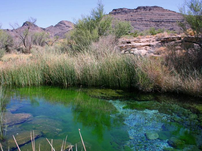 Preview photo of Ash Meadows National Wildlife Refuge