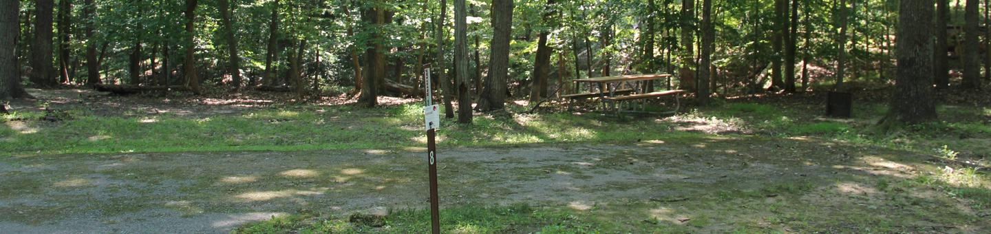 A loop Youth/Scout only Site 8 Greenbelt Park campground