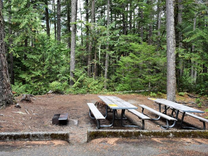 Two picnic tables in siteView of campsite