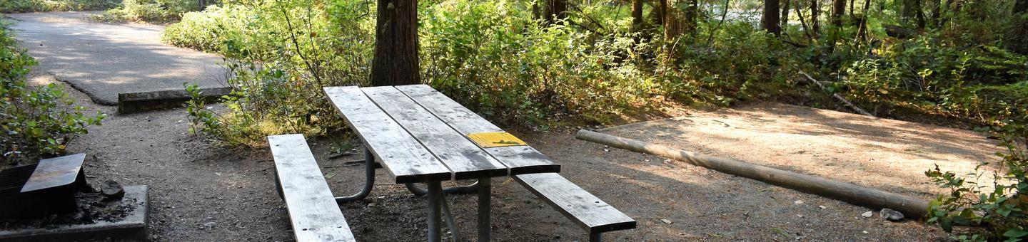 Picnic table and tent pad with driveway in distanceView of tent pad for site