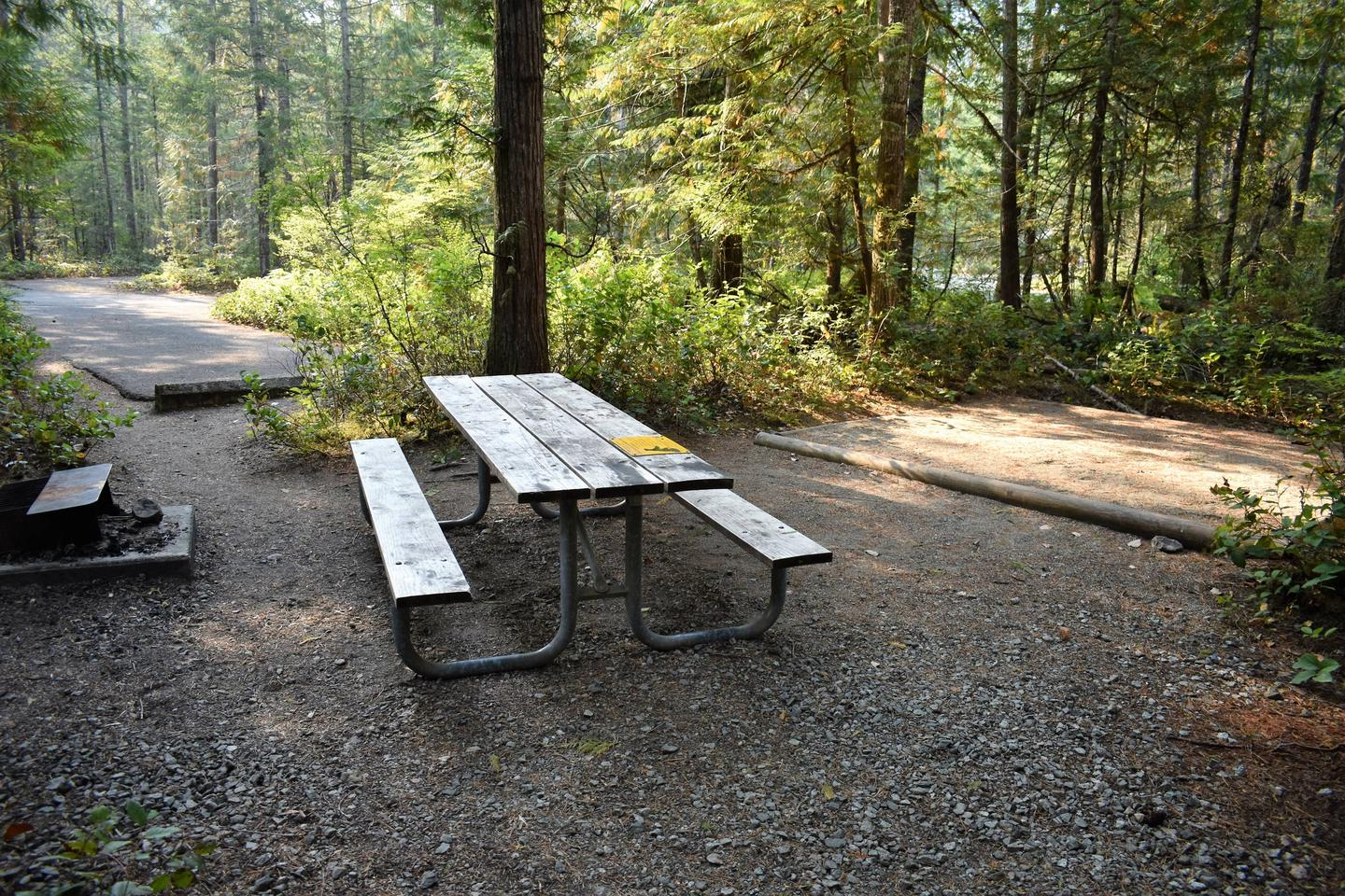 Picnic table, tent pad, and fire pitView of campsite