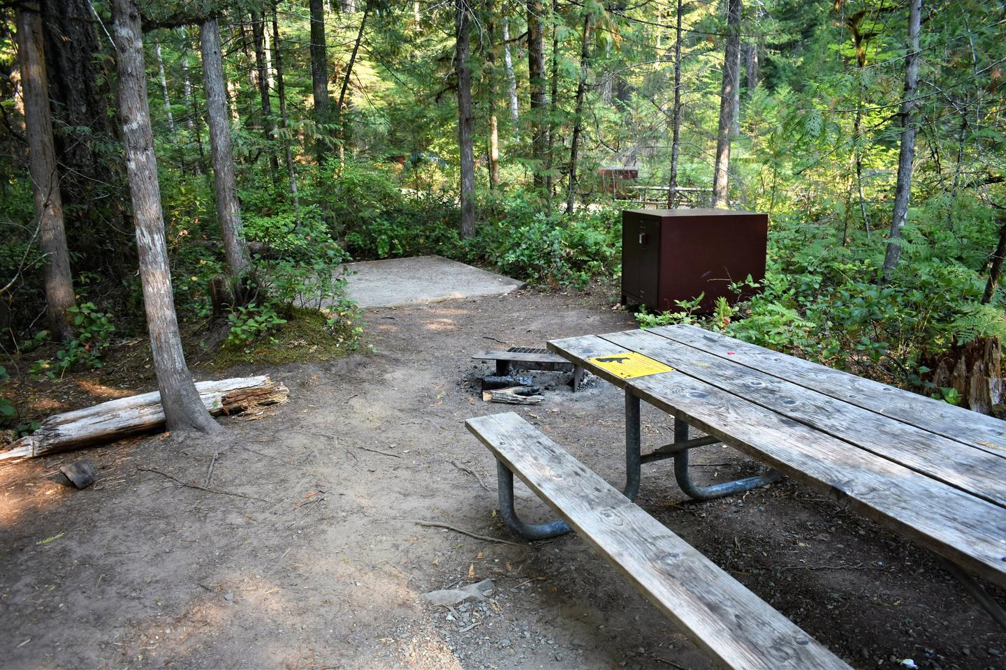 Picnic table and tent pad, and food storage lockerView of campsite