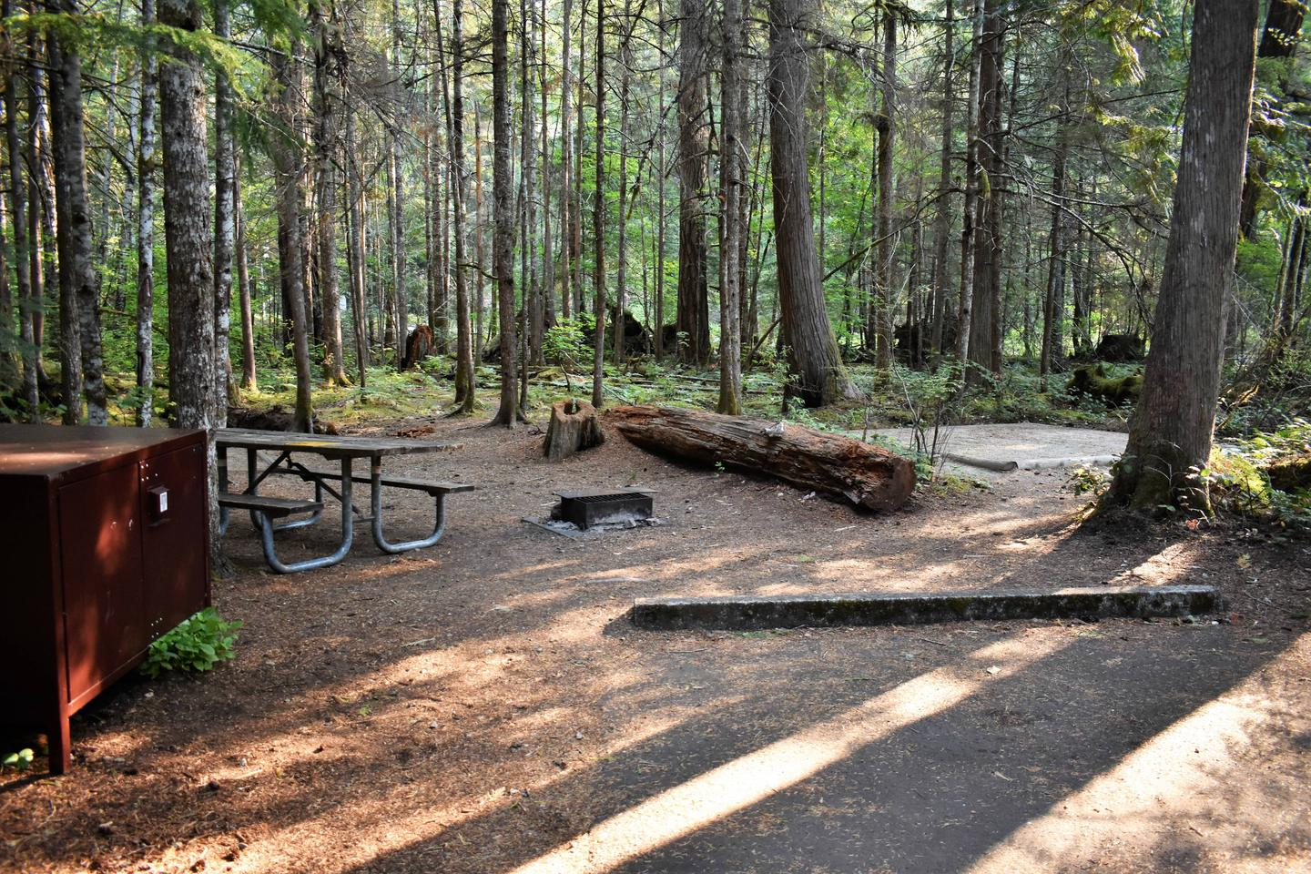 Food locker, picnic table, fire ring, and tent padView of campsite