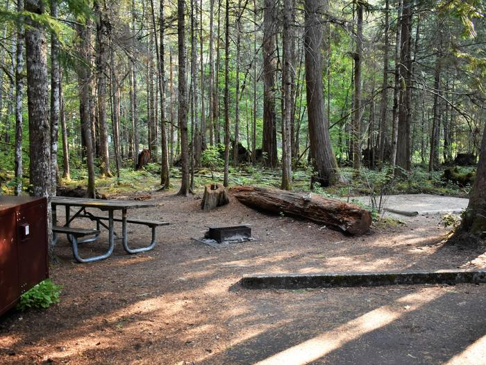 Food locker, picnic table, and tent padView of campsite