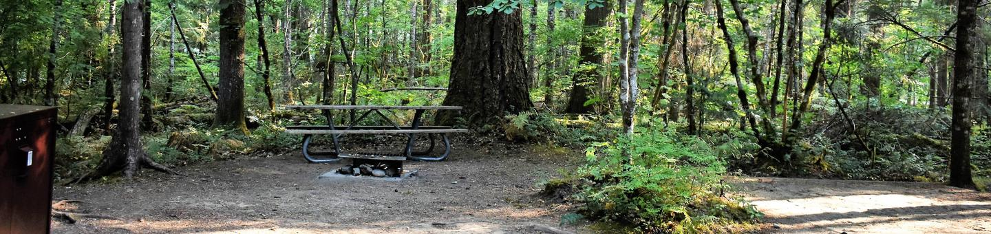 Food locker, fire ring, picnic table, and tent padView of campsite