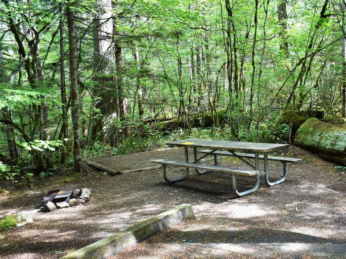 Tent pad, picnic table, and food storage lockerView of campsite