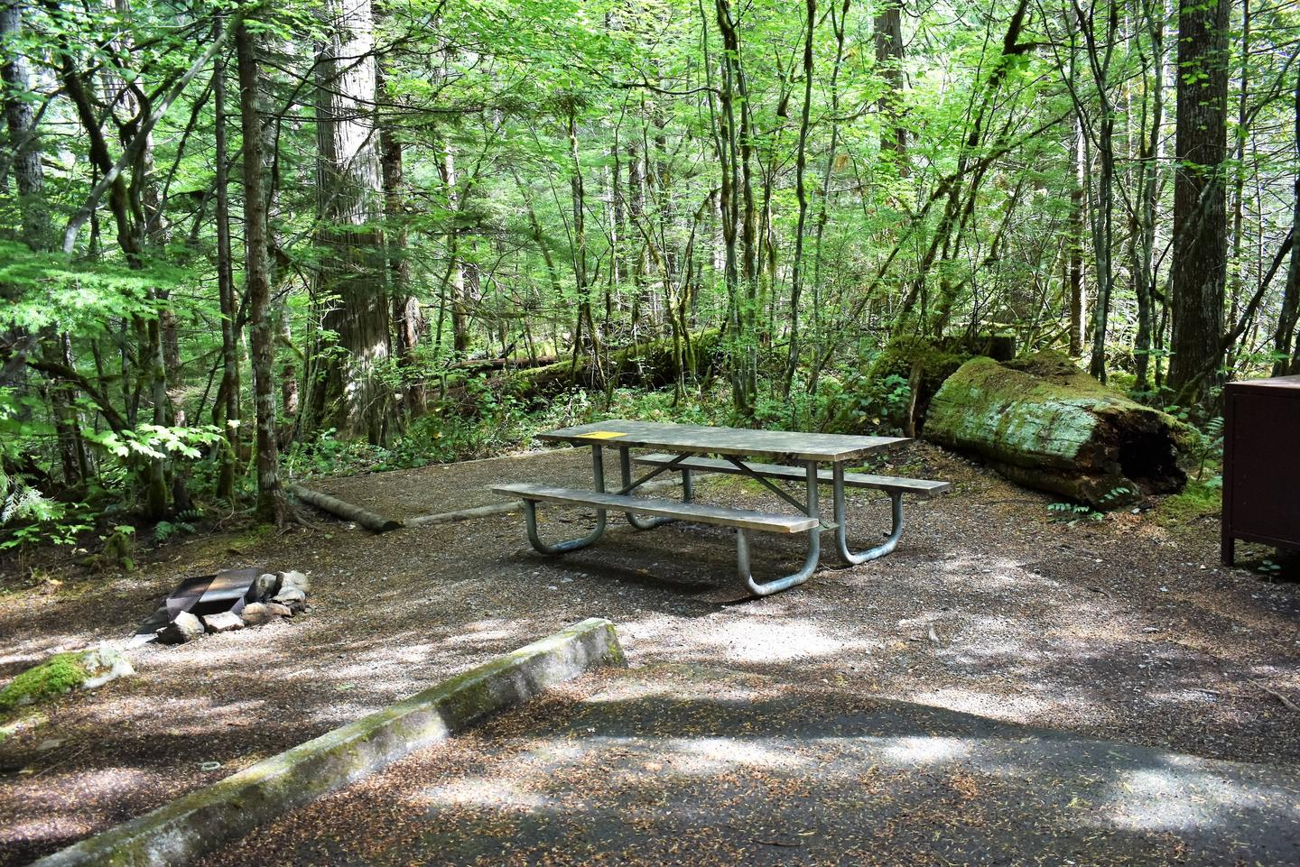 Fire ring, tent pad, picnic table, and food storage lockerView of campsite