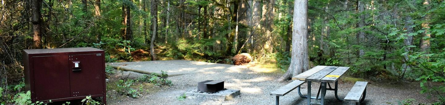 Food storage locker, tent pad, fire ring, and picnic tableView of campsite