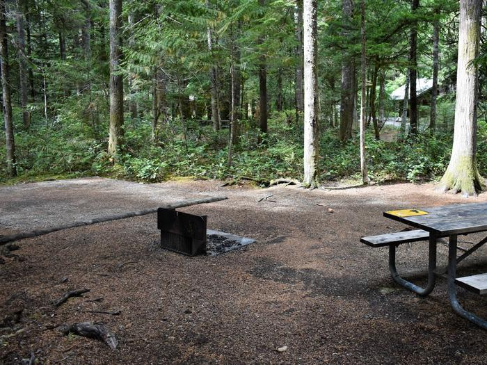 Tent pad, fire ring, picnic table, and food storage lockerView of campsite