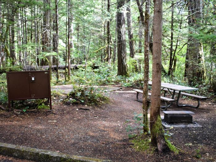 Food storage locker, tent pad, and picnic tableView of campsite