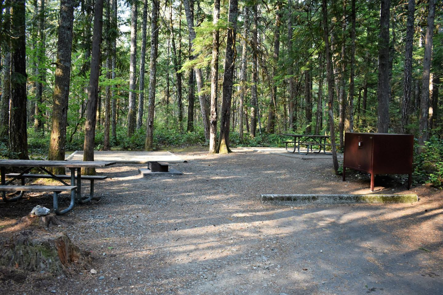 Picnic tables, fire ring, tent pads, and food storage lockerView of campsite