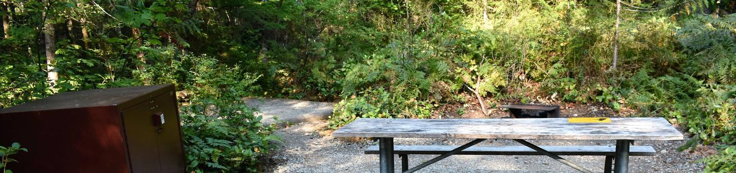 Food storage locker, tent pad, picnic table, and fire ringView of campsite